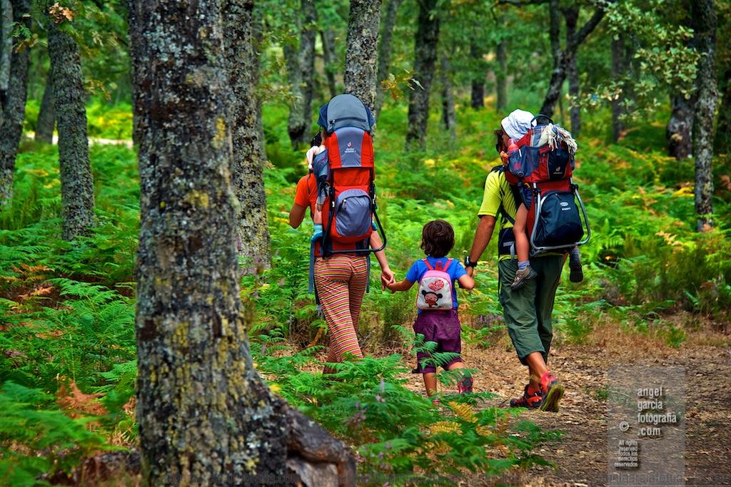 senderismo en familia. Fuente: http://www.ojodigital.com/